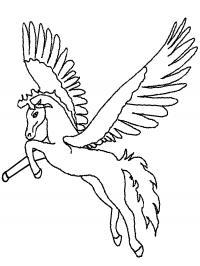 Крылья как у беркута Раскраски для девочек бесплатно