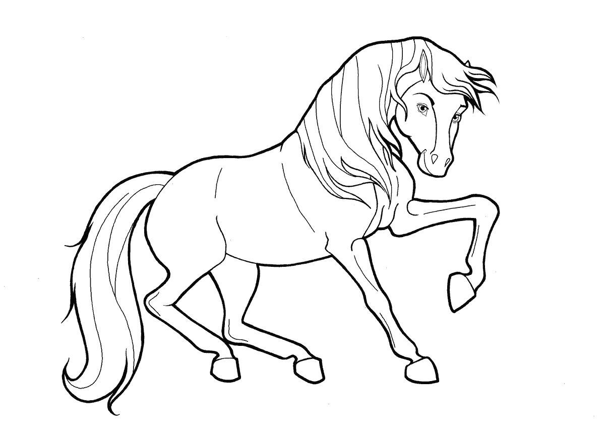 Лошадка прыгает Распечатываем раскраски цветы бесплатно