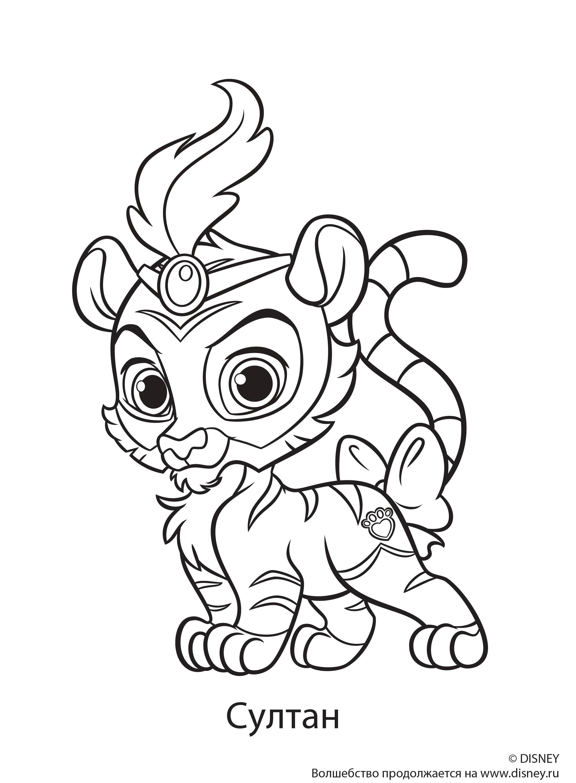 Супер тигр султан Раскраски для девочек бесплатно