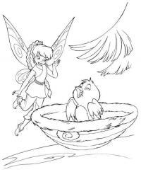 Фея с птичкой Раскраски для девочек скачать