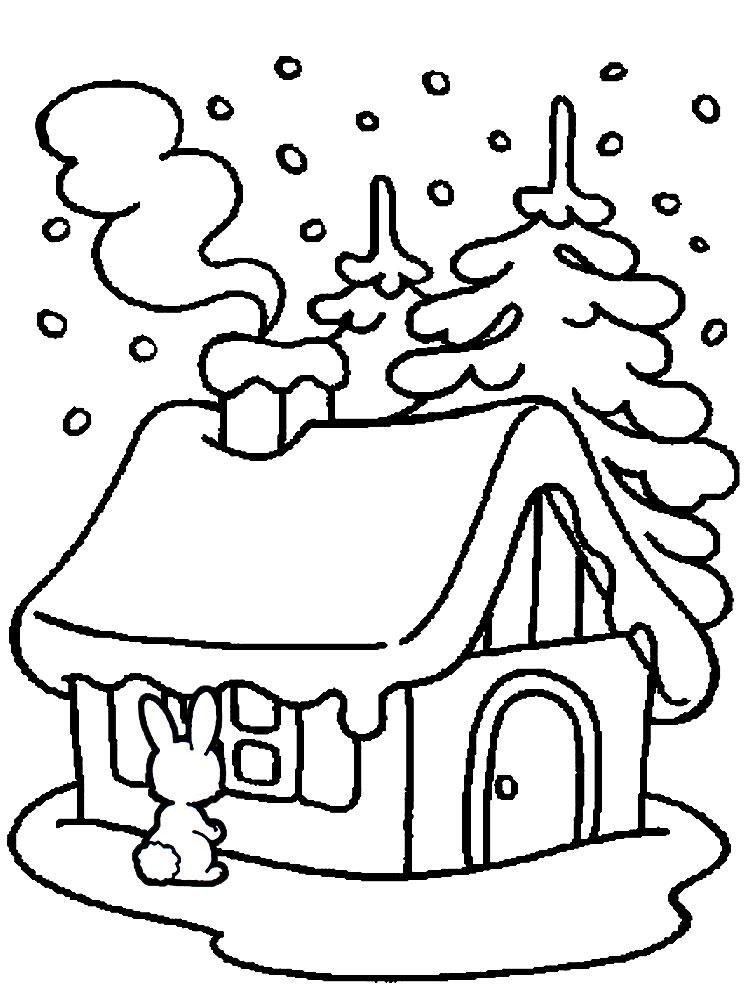Раскраски Зебры  Картинкираскраски для детей и взрослых