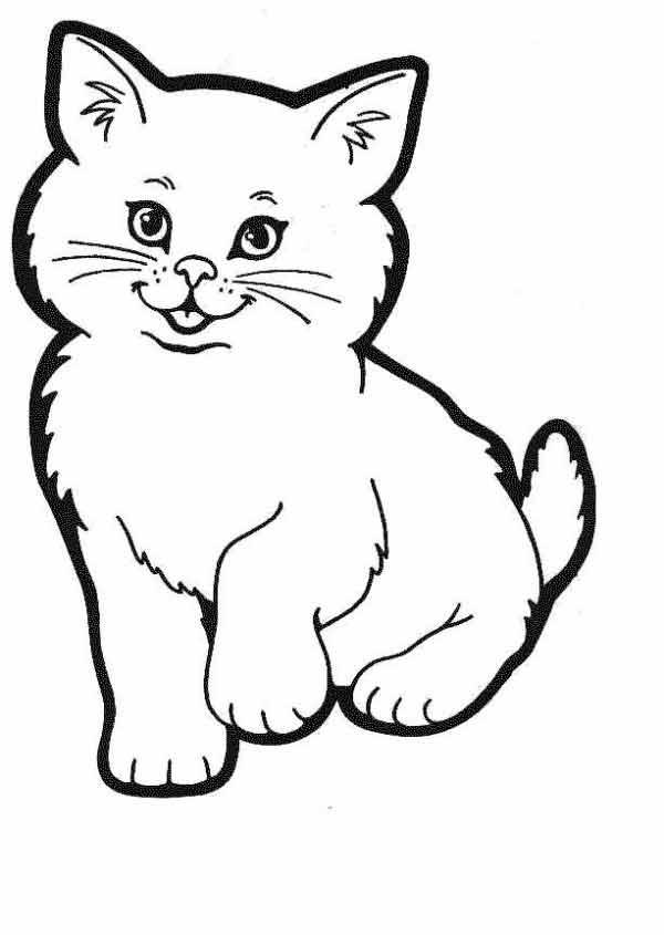 Пушистый котенок Раскраски с чудесными цветами