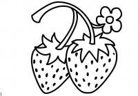Цветы и ягоды, земляника, клубника Раскраски для девочек распечатать