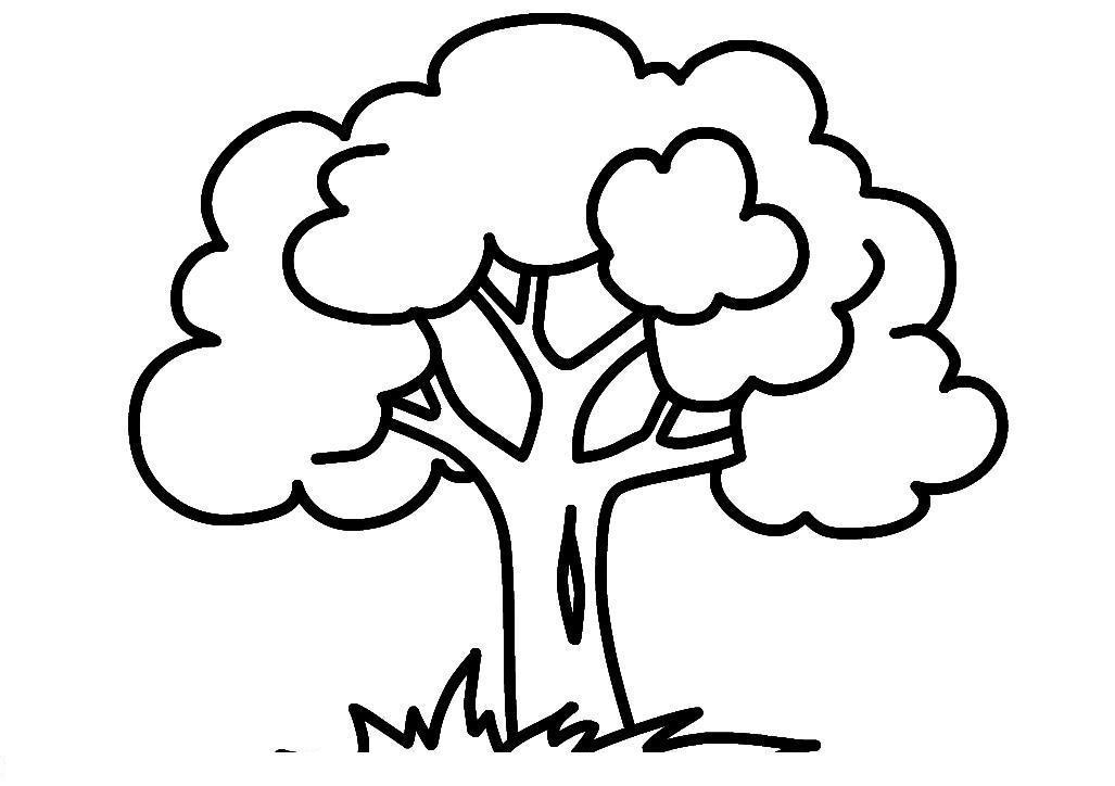 Дерево Раскраски для девочек распечатать