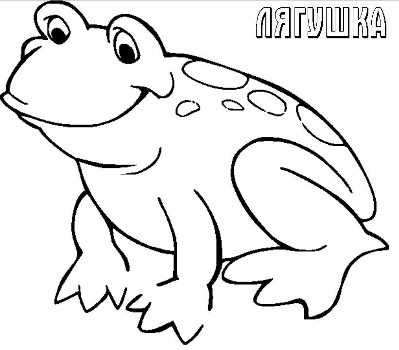 Лягушка Раскраски для девочек распечатать
