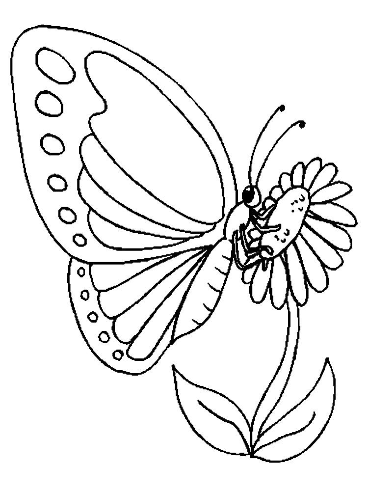 Бабочка на цветке Раскраски для девочек распечатать