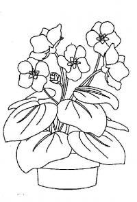 Цветочки в горшочке Раскраски для девочек распечатать