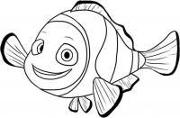 Рыба клоун в поисках нэмо Раскраски для девочек распечатать