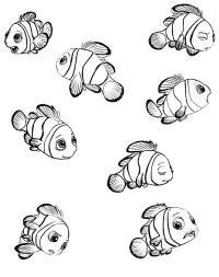 Рыбки клоуны Раскраски для девочек распечатать
