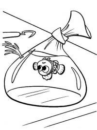 Рыбка в мешочке, нэмо в ловушке Раскраски для девочек распечатать
