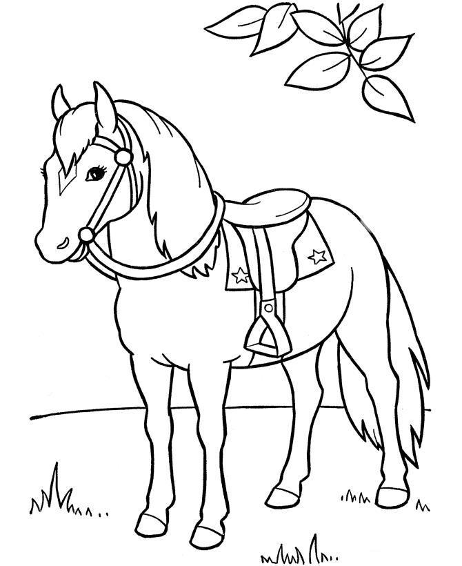 Красивая лошадь Раскраски для девочек бесплатно