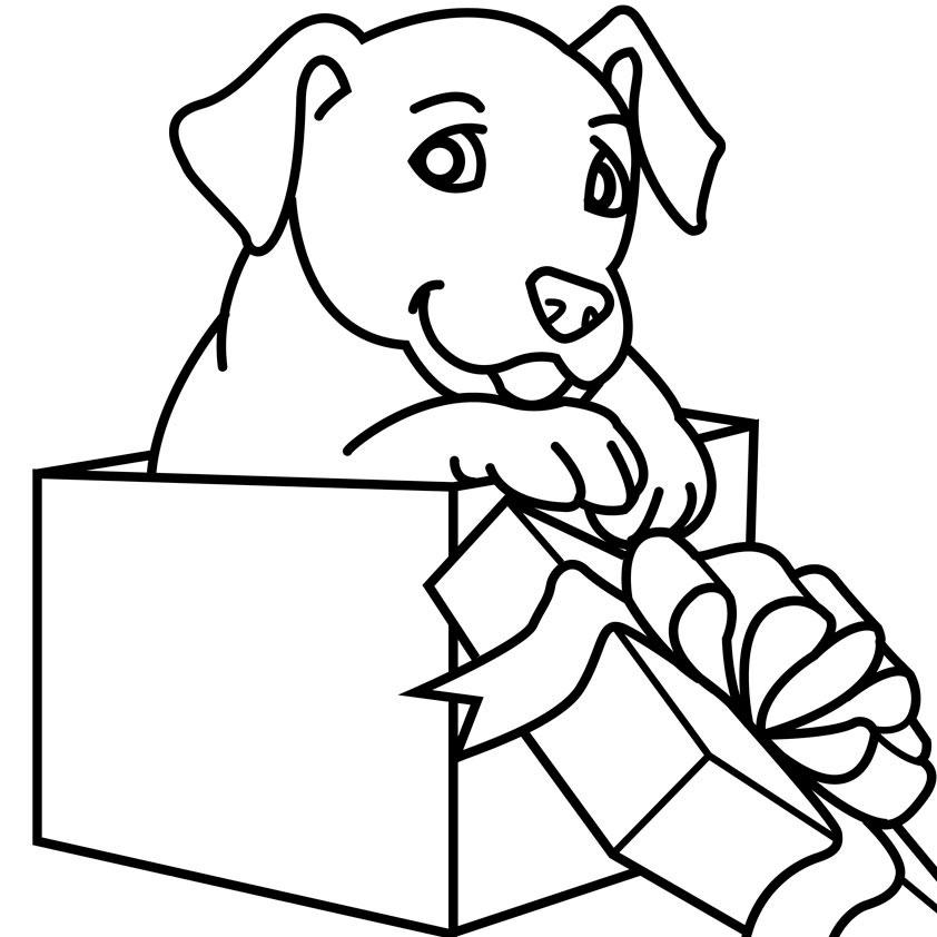 Щенок в коробке Раскраски для девочек онлайн