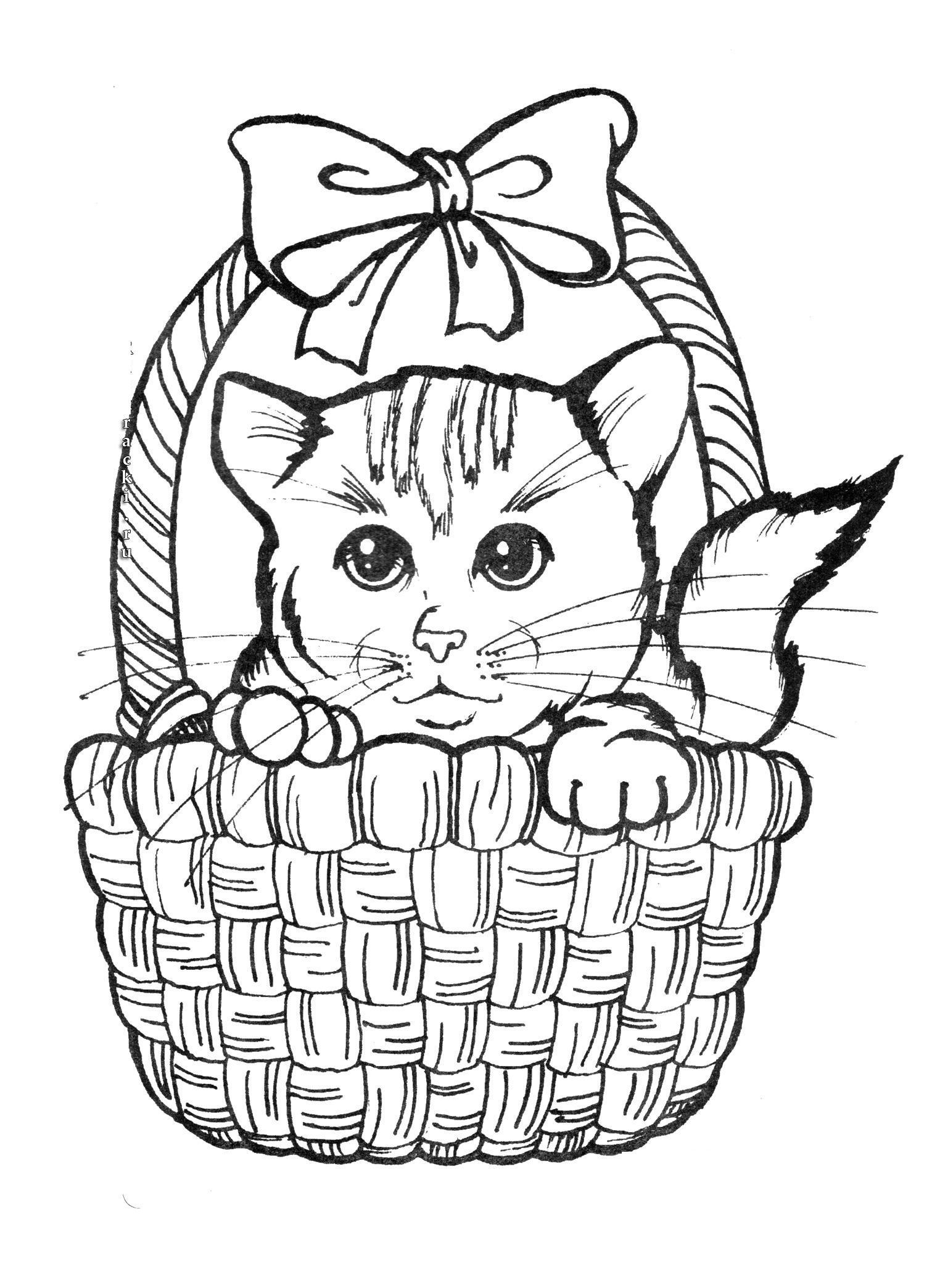 Котенок в корзинке с бантом Для детей онлайн раскраски с цветами