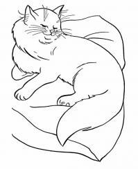 Довольная кошка на подушке Для детей онлайн раскраски с цветами