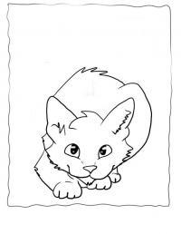 Кошка Для детей онлайн раскраски с цветами