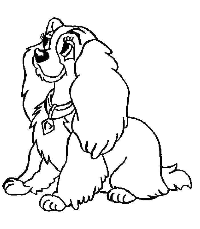 Собака Раскраски для девочек бесплатно