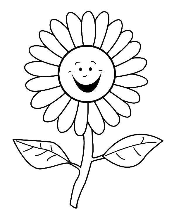Квітки картинка