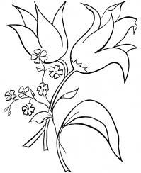Цветы цветут Раскраски с цветами распечатать бесплатно