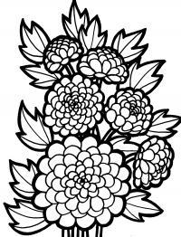 Цветы, ветки Раскраски с цветами распечатать бесплатно