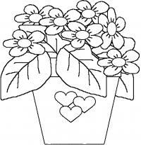 Коробка цветов Раскраски с цветами распечатать бесплатно