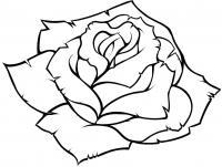 Цветы Раскраски для девочек скачать