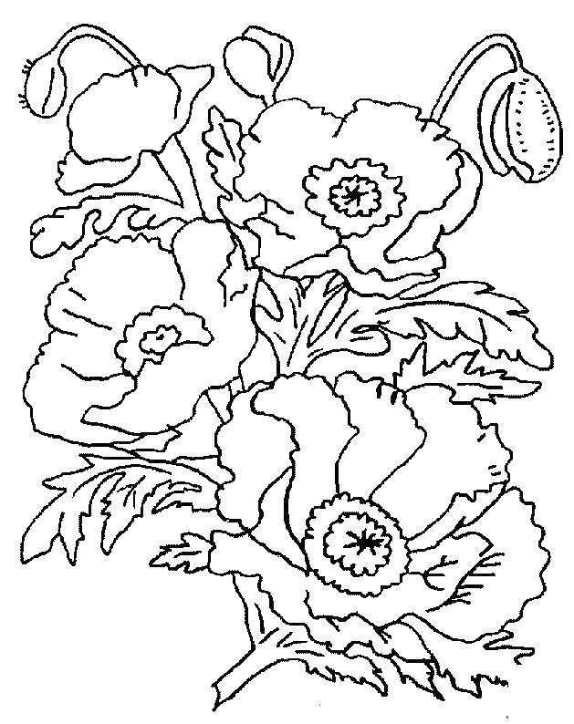 Цветы из мульта Онлайн бесплатные раскраски цветы