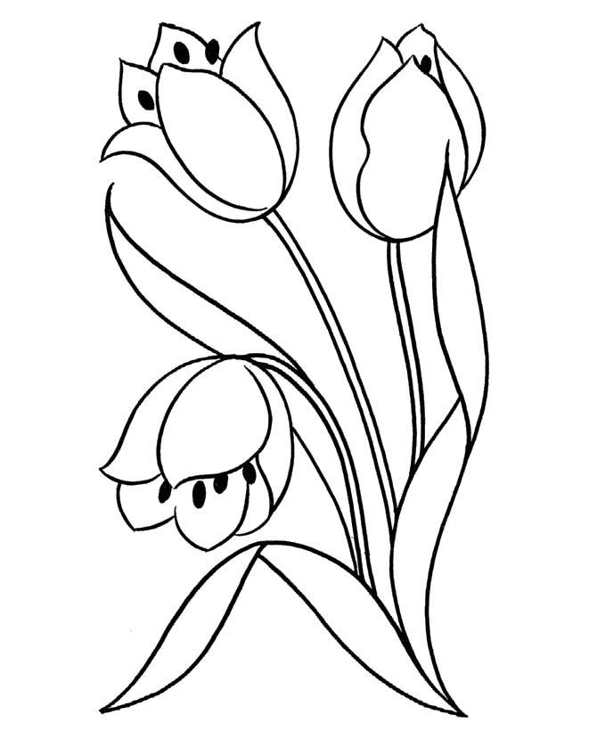 Цветы Онлайн бесплатные раскраски цветы