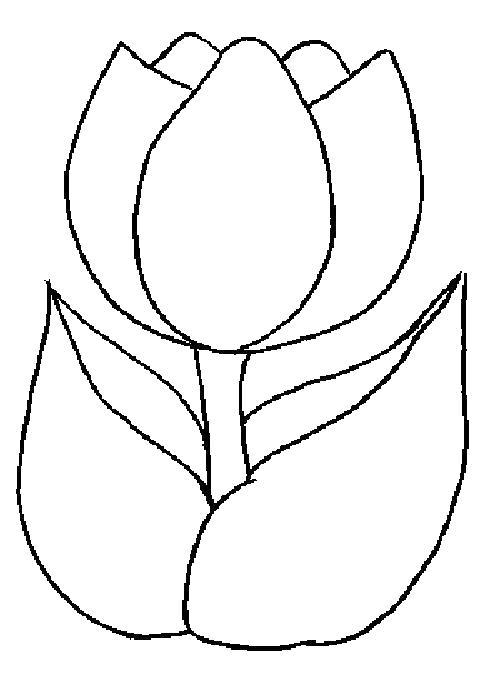 Один цветок Раскраски с цветами распечатать бесплатно