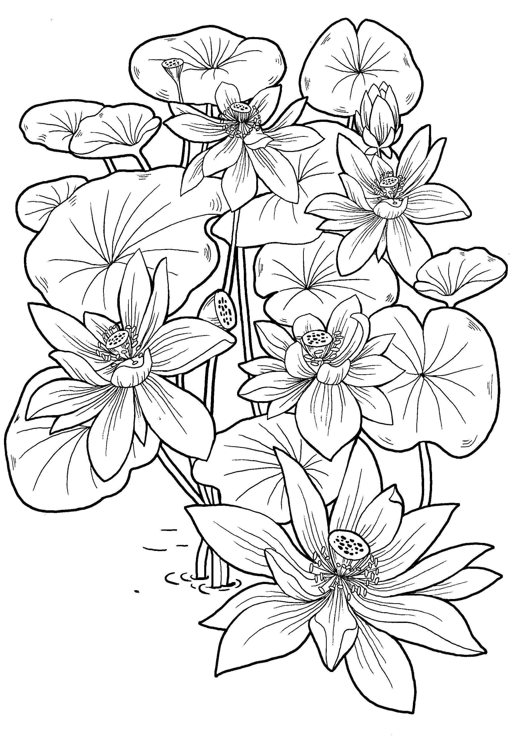Цветы Детские цветы распечатать