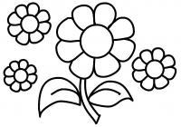 Цветы головки Раскраски для девочек бесплатно