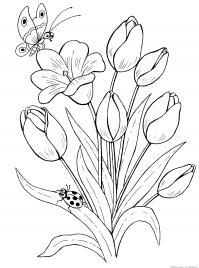 Цветы, насекомые Раскраски для девочек распечатать