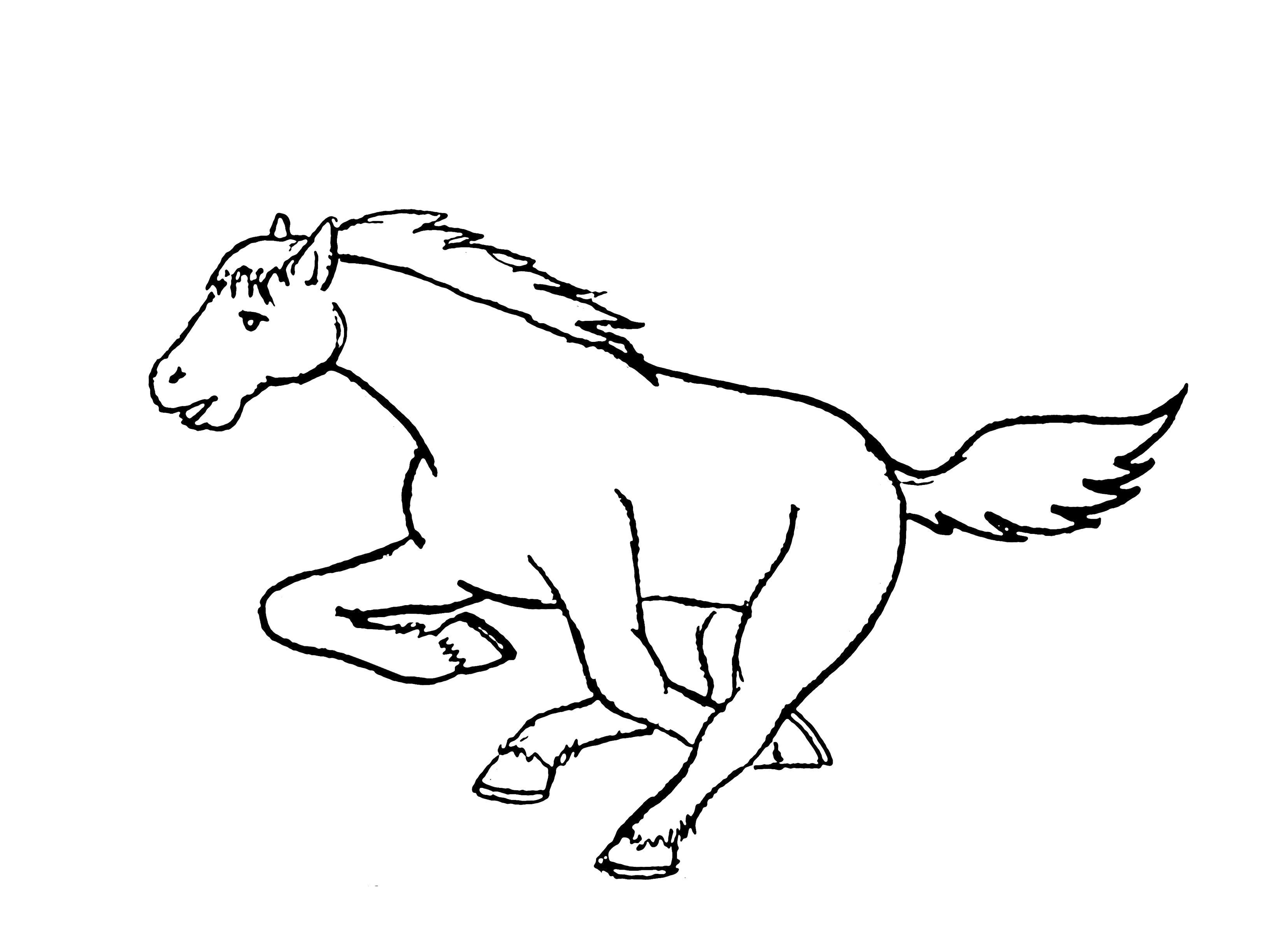 Лошадка скокает Раскраски с цветами распечатать бесплатно