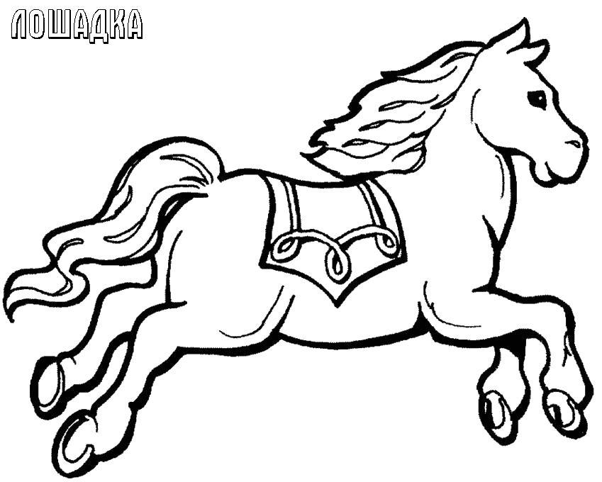 Лошадки прыгун Раскраски с цветами распечатать бесплатно