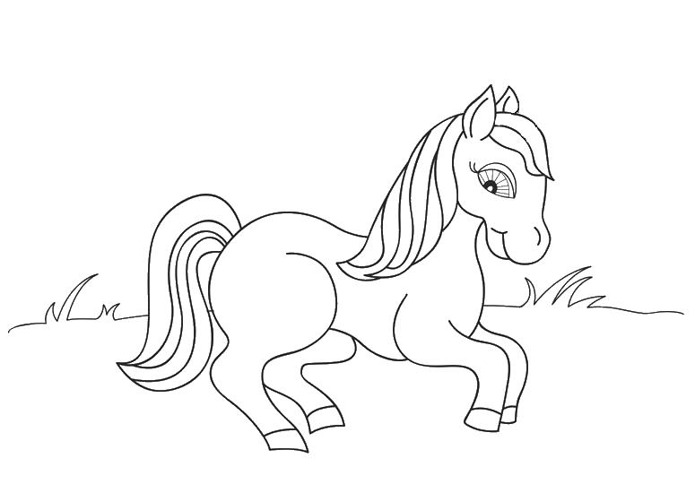 Лошадка присела Раскраски с цветами распечатать бесплатно