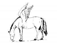 крылья лошади Раскраски с цветами распечатать бесплатно