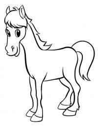 Маленькая лошадка Раскраски с цветами распечатать бесплатно