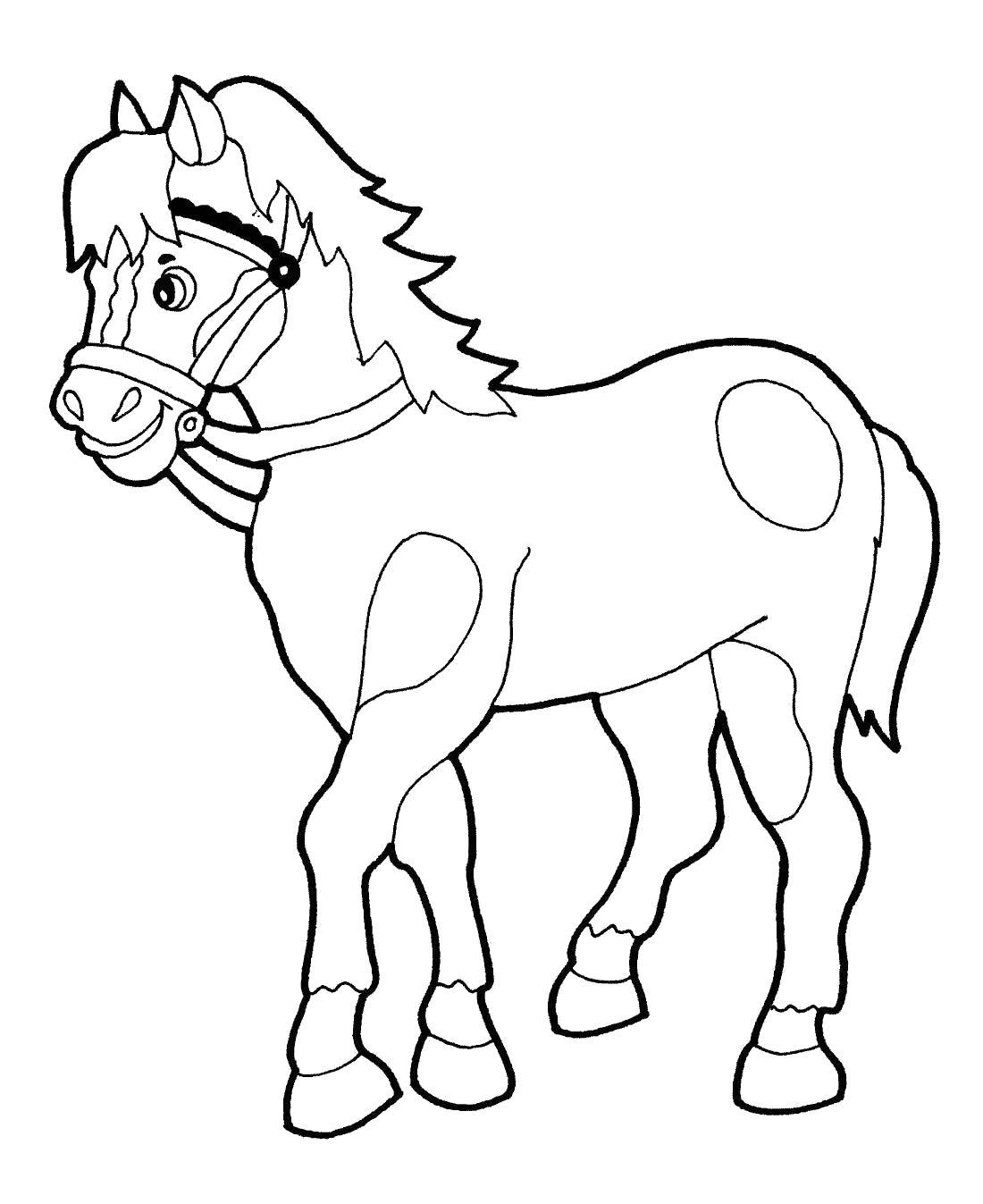 Лошадка с кружками Раскраски с цветами распечатать бесплатно