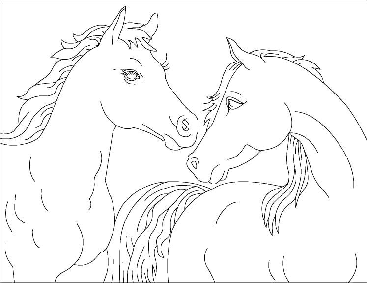 Лошади Раскраски с цветами распечатать бесплатно