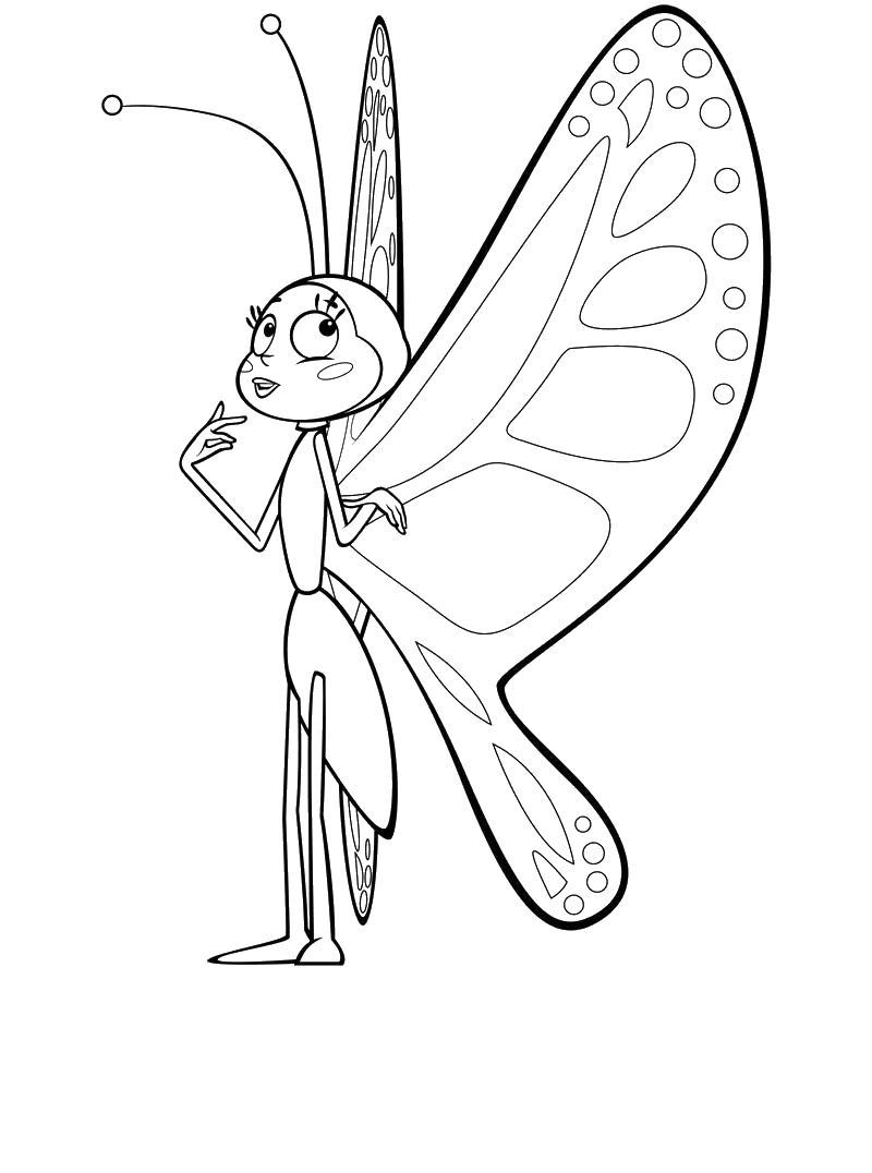 Бабочка Раскраски с цветами распечатать бесплатно