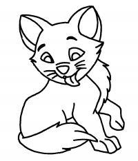 Кот облизывает Раскраски с цветами распечатать бесплатно