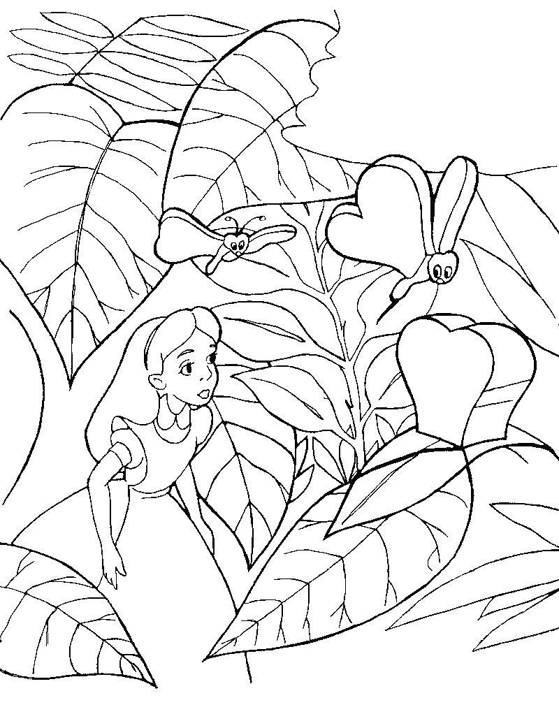 Алиса среди лепестков Найти раскраски цветов
