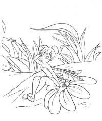 Фея с цветком Раскраски цветов скачать