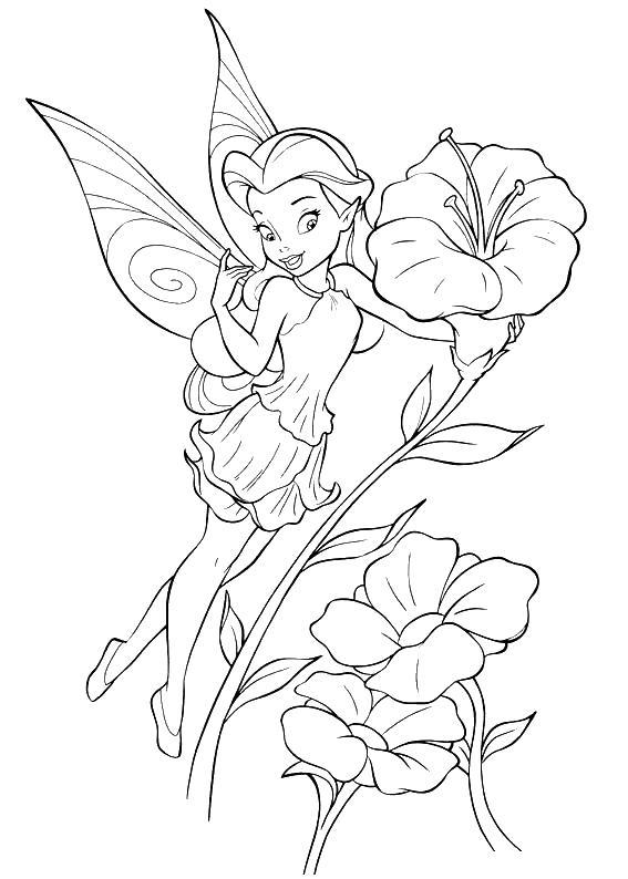 Фея любит цветы Раскраски цветов скачать