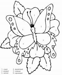 Бабочка на цветке по цифрам Скачать и распечатать раскраски цветов бесплатно