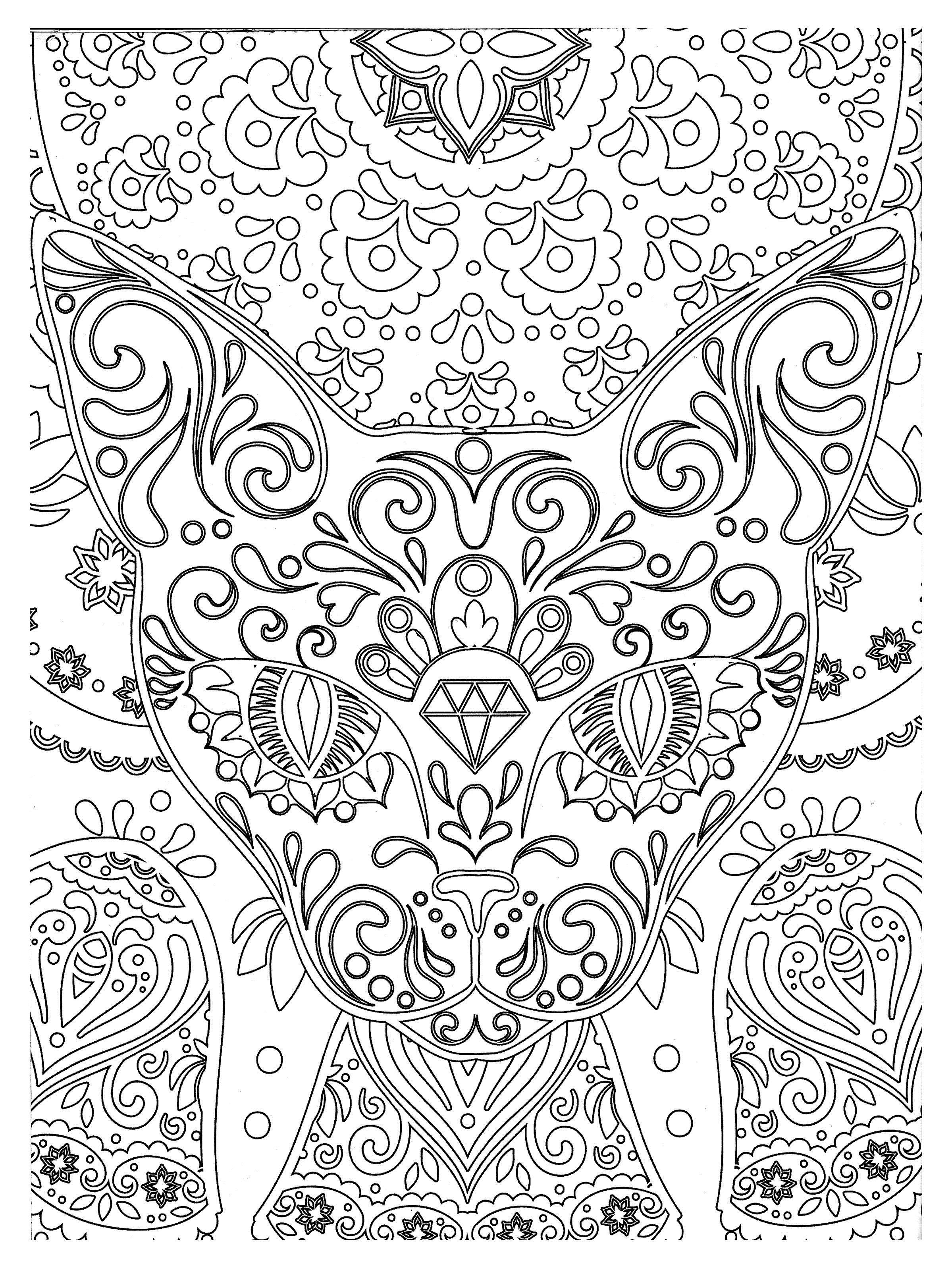 Кот из узоров Новые раскраски с цветами