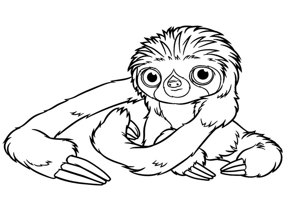 Семейка крудс, ленивец Раскраски цветы онлайн скачать и распечатать