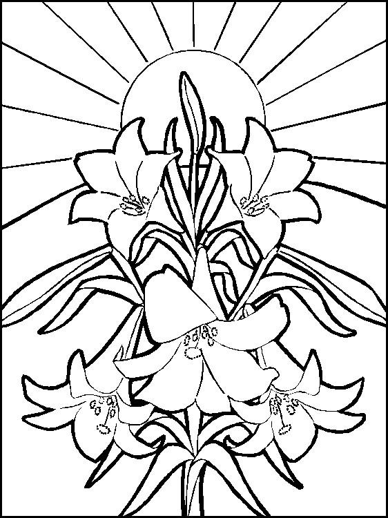 Лилии на фоне солнца Онлайн бесплатные раскраски цветы
