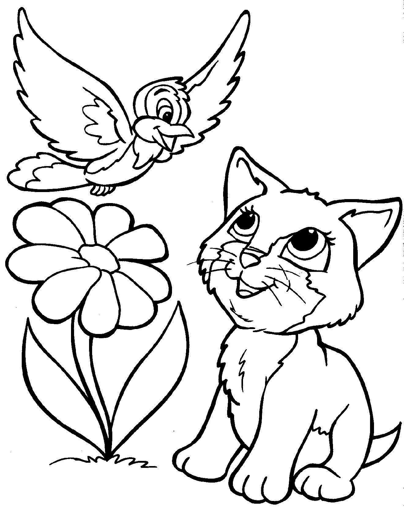 Котенок и птица Для детей онлайн раскраски с цветами