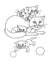 Кошка играет с котятами Для детей онлайн раскраски с цветами