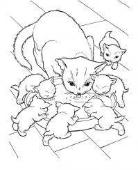 Кошка с котятами пьют молоко Для детей онлайн раскраски с цветами